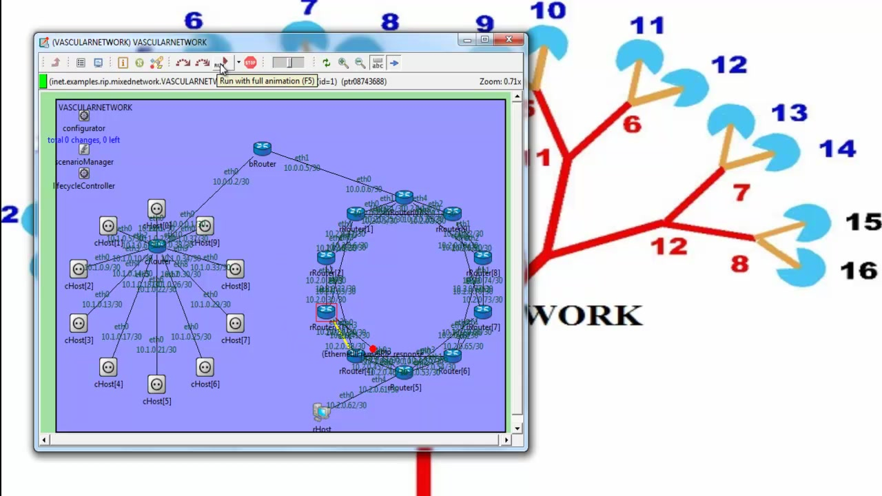 VascularNetwork_using_omnet_projects